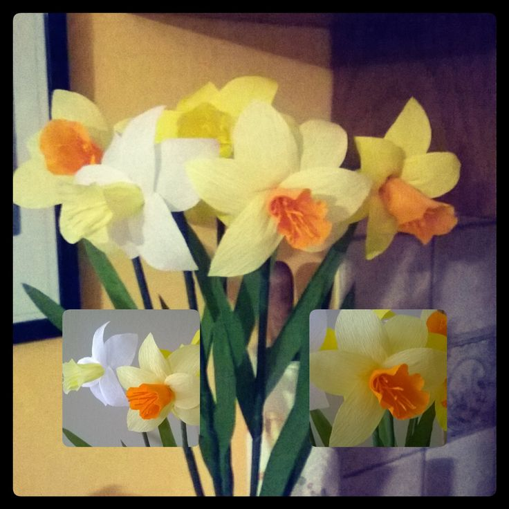 Narcisi. #paper flowers#