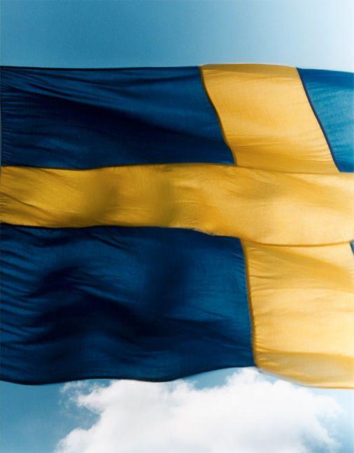 Resume sweden