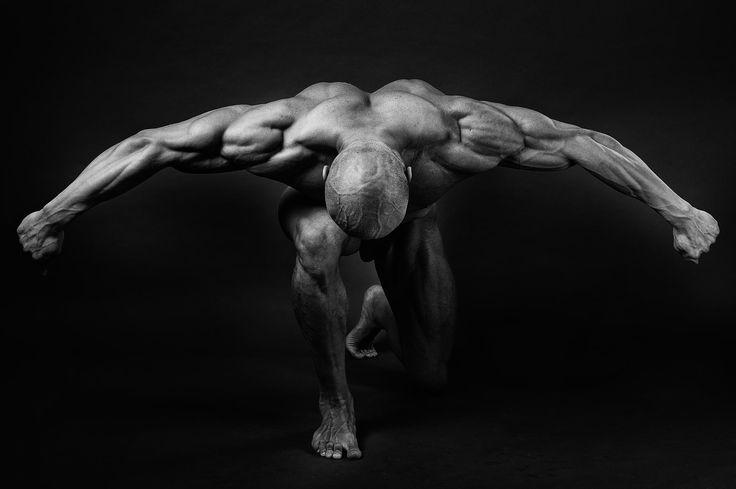 bodybuilding by Krzysztof Serafiński on 500px