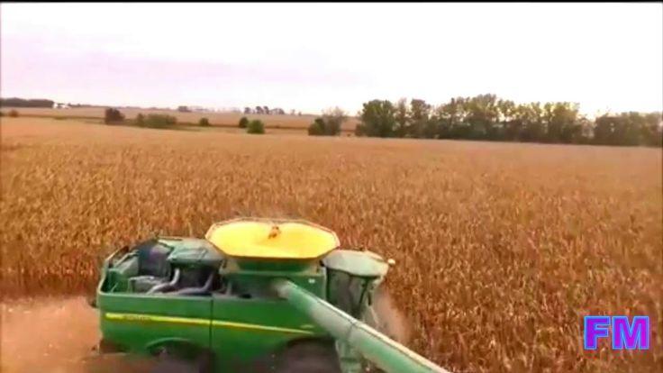 Corn Harvest at Pitzenberger, Greene Iowa 2015  !FM!