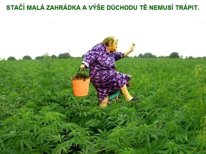 *SMĚJEME SE PRO ZDRAVÍ* - diskuse.Dáma.cz