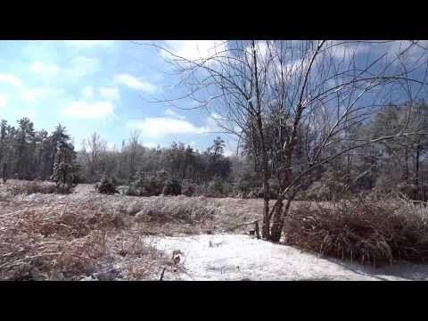 Sony QX10 1080p HD Test Footage - YouTube