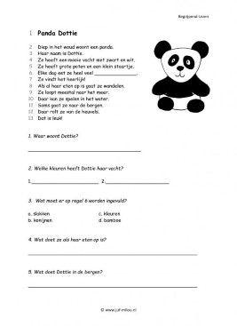 Begrijpend lezen - Panda dottie