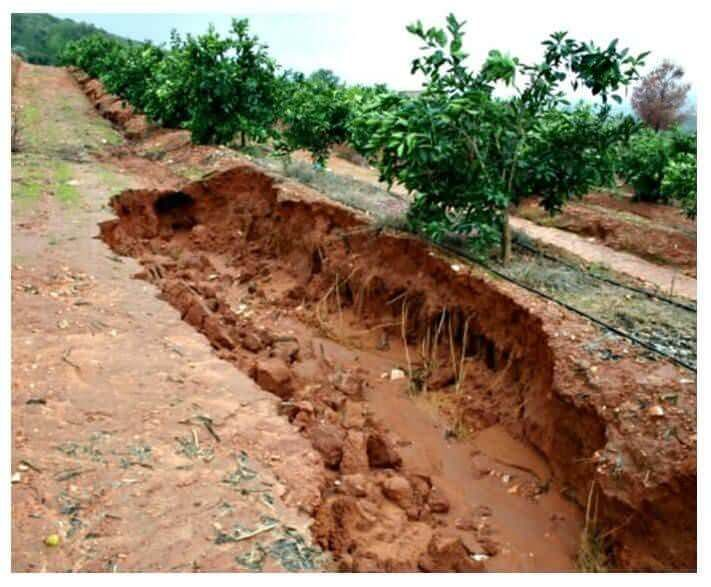 19 best erosion control images on pinterest