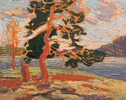 The Pine Tree  by Tom Thomson