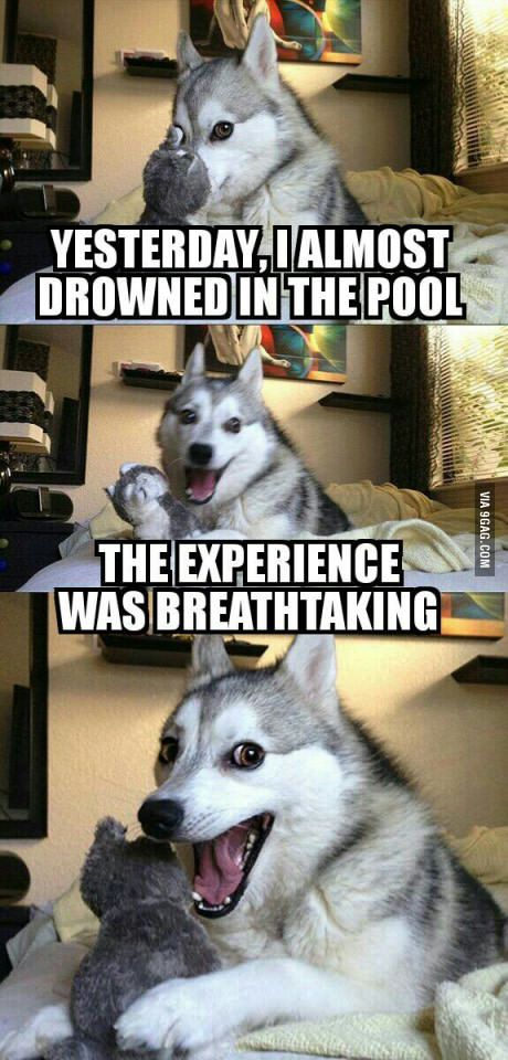 i love this because they almost drowned yet feel the need to make a pun out of it