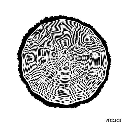 Vecteur : Rings of a tree with cracks.