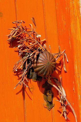 Olive Branch On Door, Cyprus