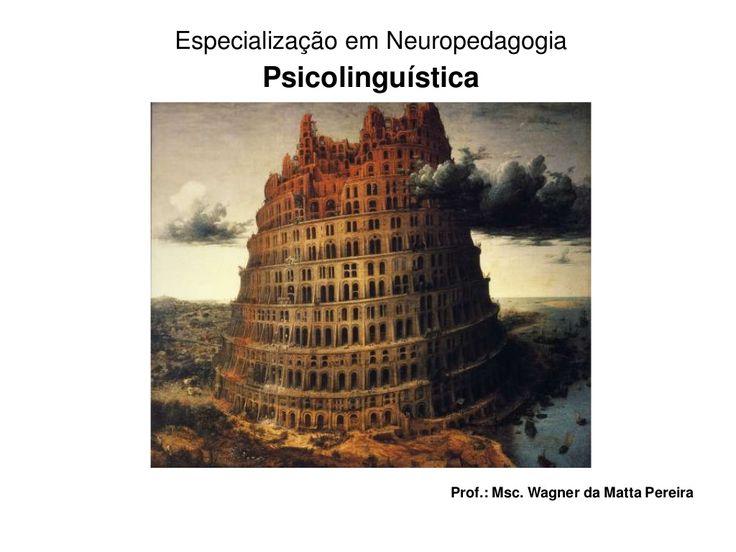 Psicolinguística: algumas teorias sobre a aquisição da linguagem  by Wagner da Matta via slideshare