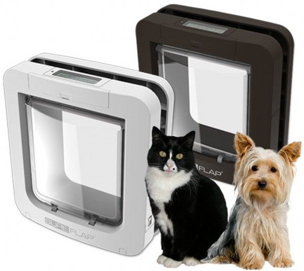 Sureflap Microchip Pet Door For Larger Cats Amp Small Dogs Pet Door Pet Doors Dog Door