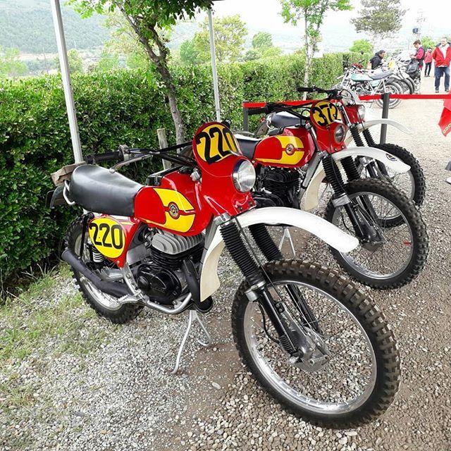 Bultaco Day 2019 Bultaco Motorcycles Motorcyle Motorcycle