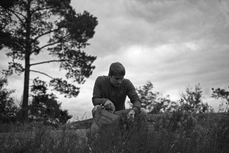 Picking herba militaris a.k.a. Alchemilla millefolium.