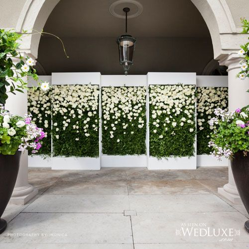 Luxurious Living wall backdrop