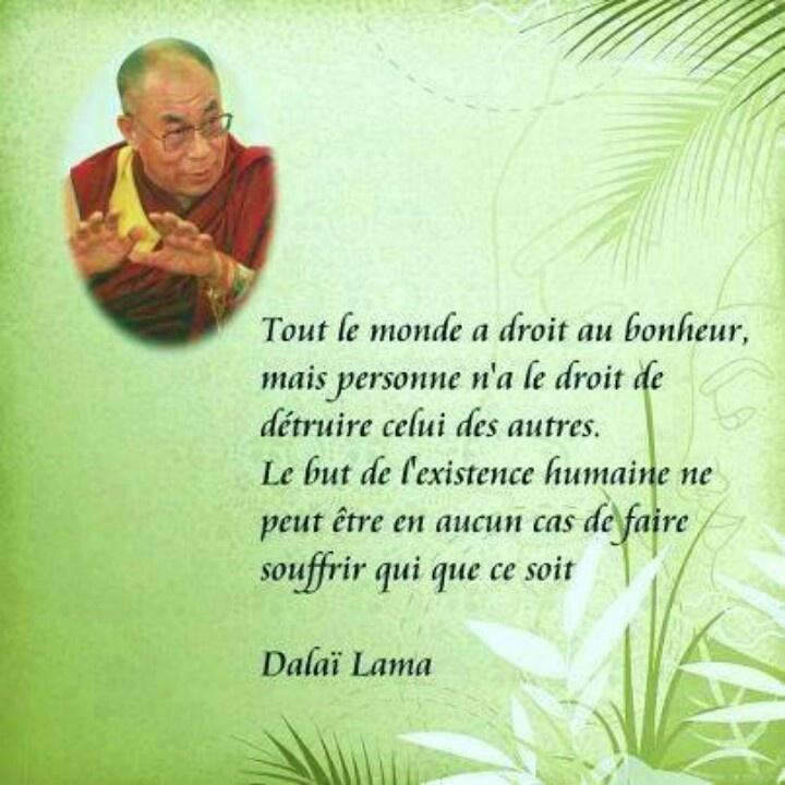 Préférence 280 best Citations ,belles pensées images on Pinterest | Happiness  CH78