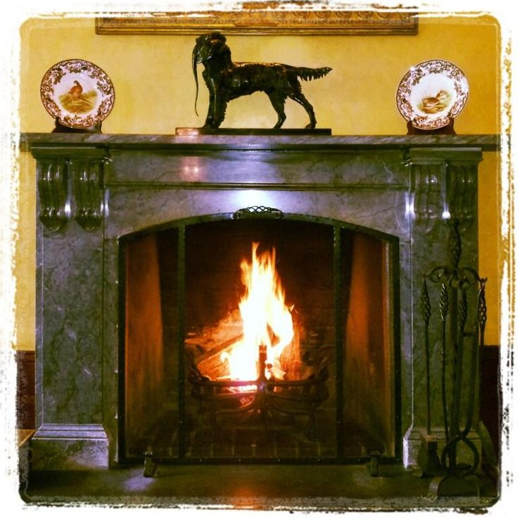 Warm fire in the Lounge