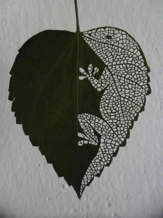 We've posted a lot of #autumn leaf art ideas for our #primary #teachers but here's an idea for your secondary students! (We're not sure ARK schools own the prerequisite lasers though)