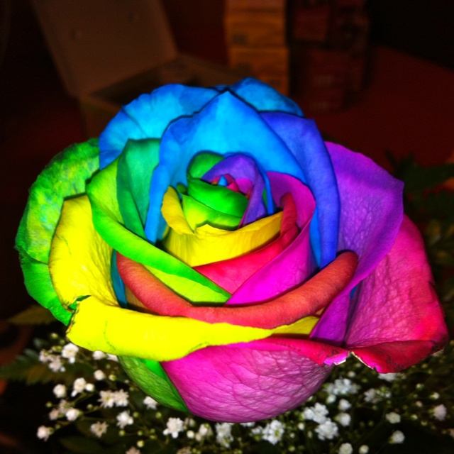 tie dye rose favorite places spaces pinterest