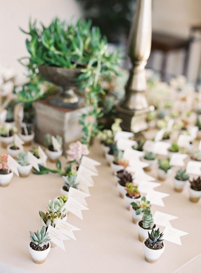 Mini succulent favors: http://www.stylemepretty.com/2016/07/26/luxury-at-home-florida-wedding/ | Photography: Justin DeMutiis Photography - http://justindemutiisphotography.com/