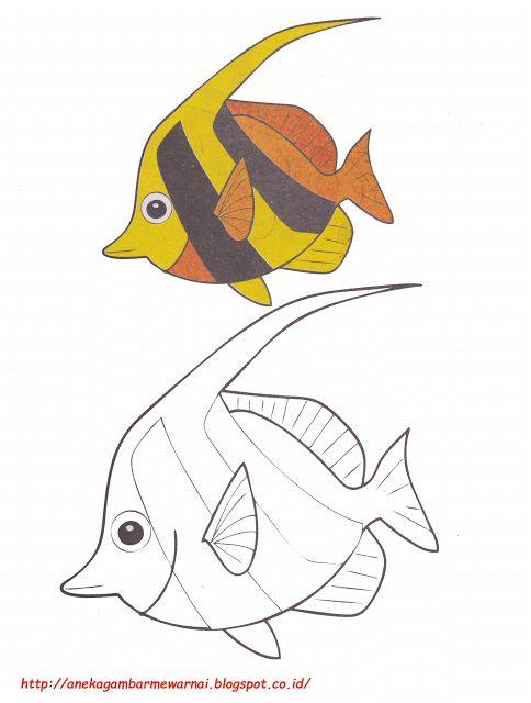 Aneka Gambar Mewarnai - Gambar Mewarnai Ikan Bendera Untuk Anak PAUD dan TK.   Untuk gambar mewarnai...
