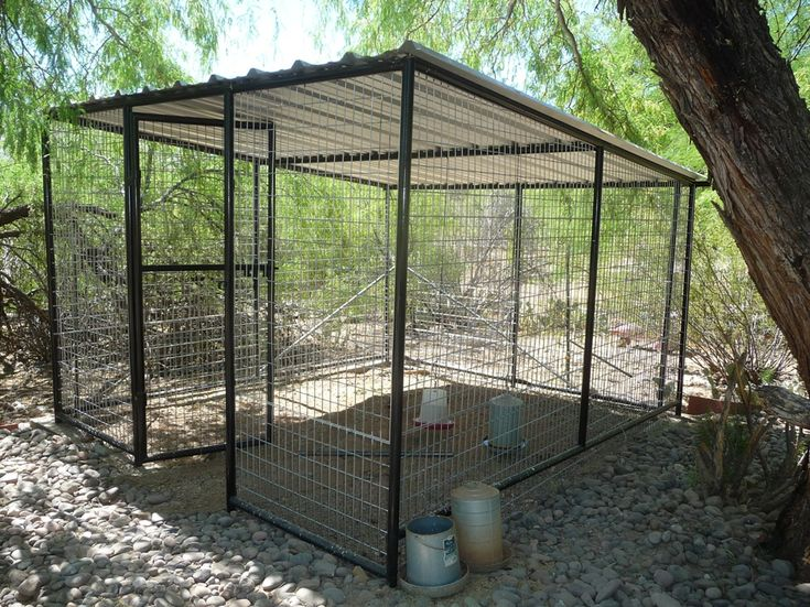 Best Quality Kennels For Dogs In AZ