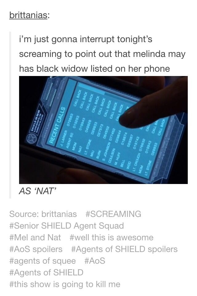 I firmly believe that Melinda May was once Natasha's SO