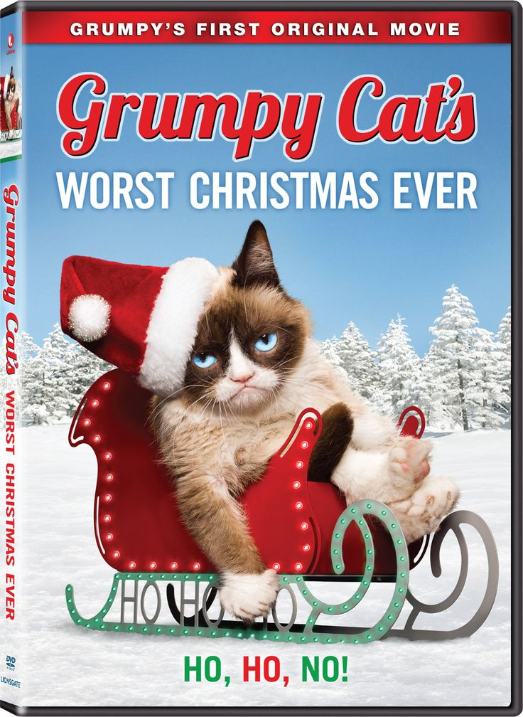 """The internet sensation """"Grumpy Cat"""" is being featured in the Lifetime Original movie """"Grumpy Cat's Worst Christmas Ever"""" which will air on November 28th."""