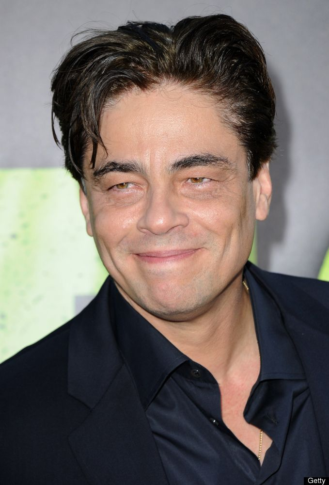 Other Puerto Rican Celebrities Include