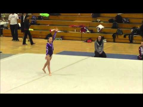 level 6 indiana state gymnastics meet results