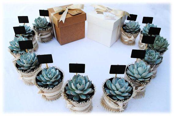 Succulent Place Card Holder // Wedding Favors // Bridal Shower Favors // Individual Succulent Favor Gift Boxes // 12 DIY Favors