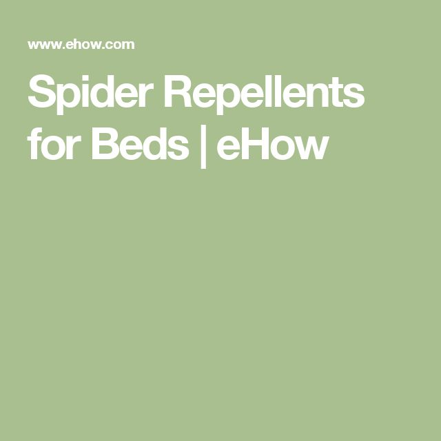 Spider Repellents for Beds | eHow