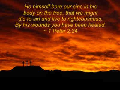 He himself bore our sins in His body, on the tree, that we might die to sin and live to righteousness. By His wounds you have been healed. 1 Peter 2:24