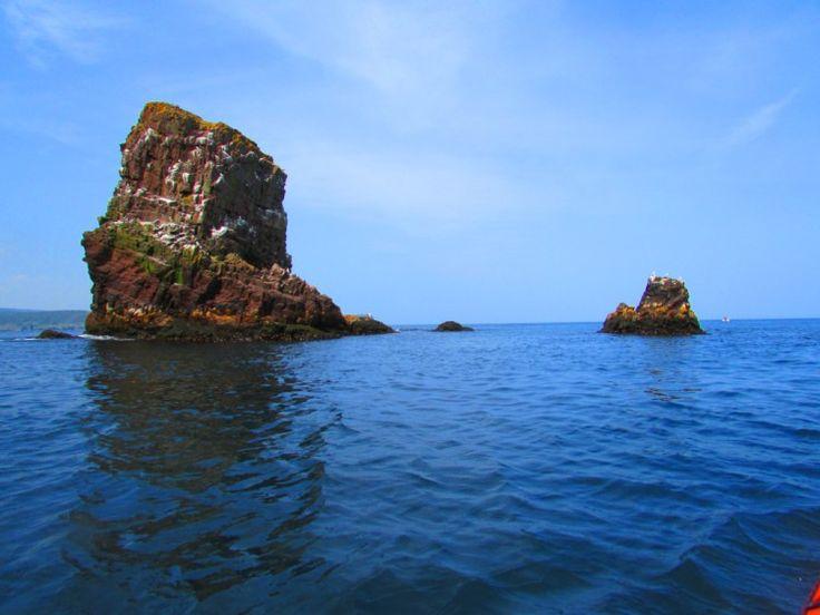 Sea Kayaking Around Sea Stacks in Newfoundland.