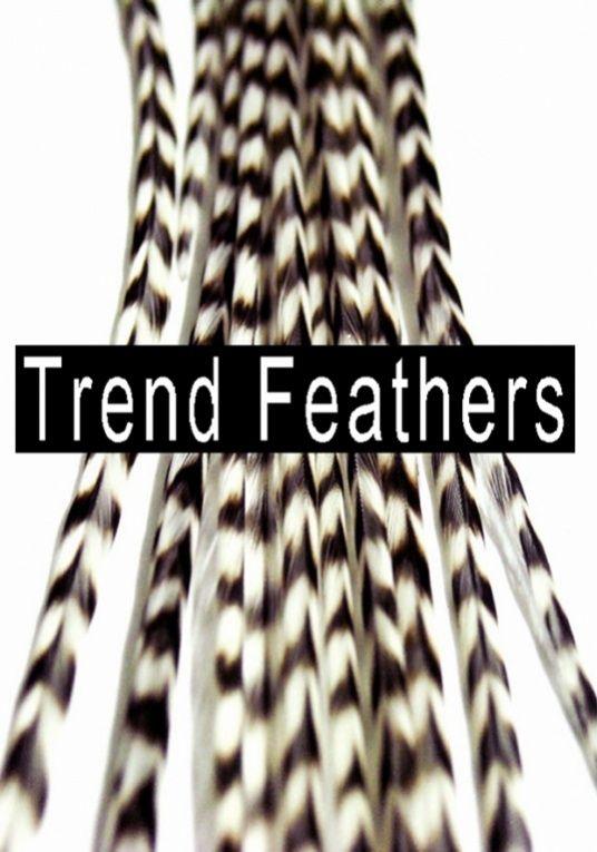 Al onze feathers zijn 100% echt en van een geweldige kwaliteit! Deze mooie veertjes staan prachtig in blond haar, bruin haar, rood haar en zwart haar kortom in alle haar kleuren geven ze een prachtig effect! Deze veertjes kunt u wassen, föhnen, krullen met de krultang en stylen met de stijltang. Deze duurzame feather extensions blijven maanden tot zelfs jaren in prachtige conditie! Deze feather packs in combinatie met de mooie display's zijn onmisbaar in uw bedrijf!