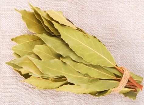 Další úžasné účinky bobkového listu Pro dobrý spánek Listy bobkového listu vložené pod polštář vám zajistí klidný spánek a pomohou vám rychleji usnout. Jejich aroma působí uklidňujícím dojmem, odplavuje stres a napětí. Lidé trpící nespavostí kvůli stresu na ně nedají dopustit. proti molům Několik lístků vavřínu ve skříni vám pomohou ochránit vaše šatstvo ve skříních …