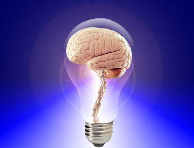 8 Human Intelligence Addition To IQ #Brain News