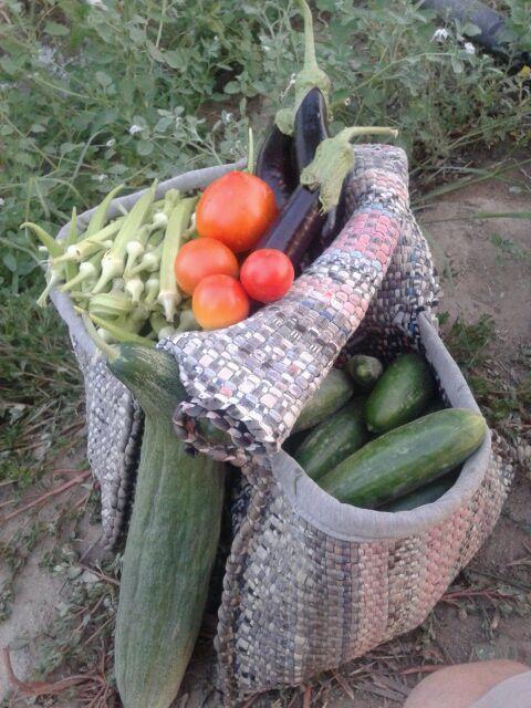 Doğal ürünler size özel bahçelerden