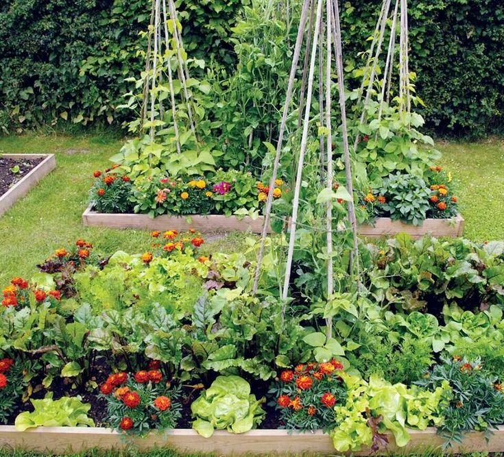 Edible Garden, Garden