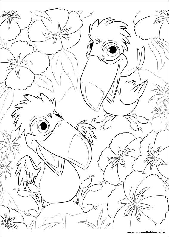 206 best Rio images on Pinterest   Rio movie, Movies and Rio 2