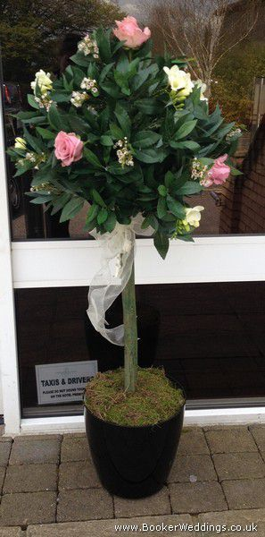 Same Day Wedding Gift Delivery : rose bay hotel wedding wedding venues flower delivery gift shops white ...