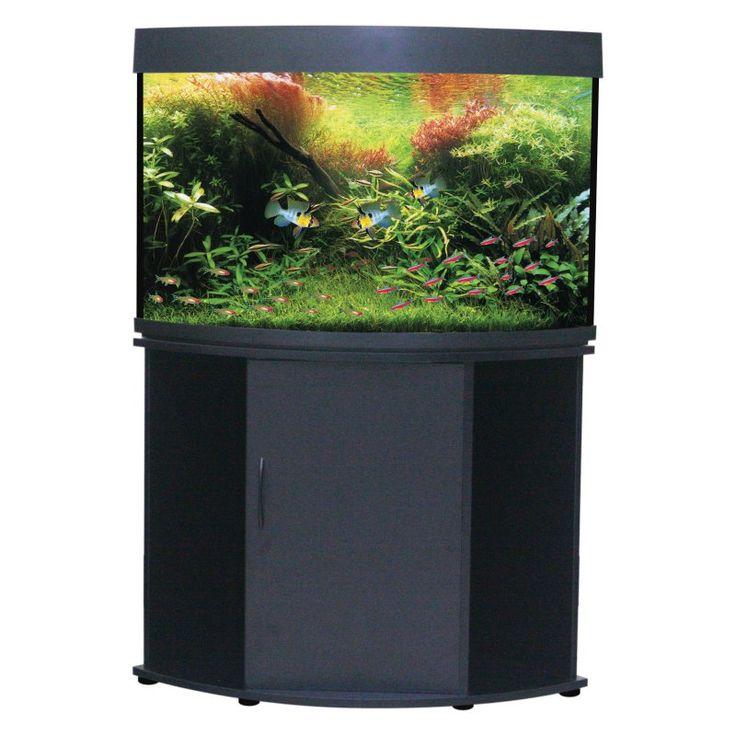 25 best ideas about corner aquarium on pinterest fish for Aquarium corner decoration