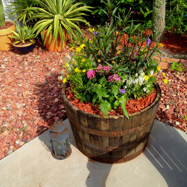 Half Wine Barrel Perfect To Plant Flowers Gardening Pinterest