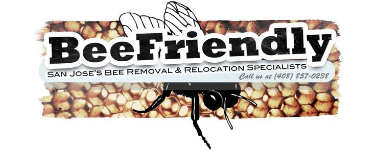 Bee removal, bee rescue, bees, honeybees, wasp, yellow jackets, beekeeper #bee #insurance http://idaho.nef2.com/bee-removal-bee-rescue-bees-honeybees-wasp-yellow-jackets-beekeeper-bee-insurance/  # Have a Bee problem? We have a solution for you! Contact us for immediate assistance (408) 857-0238 We Rescue Honey Bee Swarms for Free! Swarm clusters usually hang off of a tree branch or land on a structure. They have a tendency just show up during spring and summer. We have very reasonable rates…