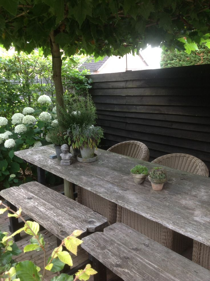 rustic table and hydrangea
