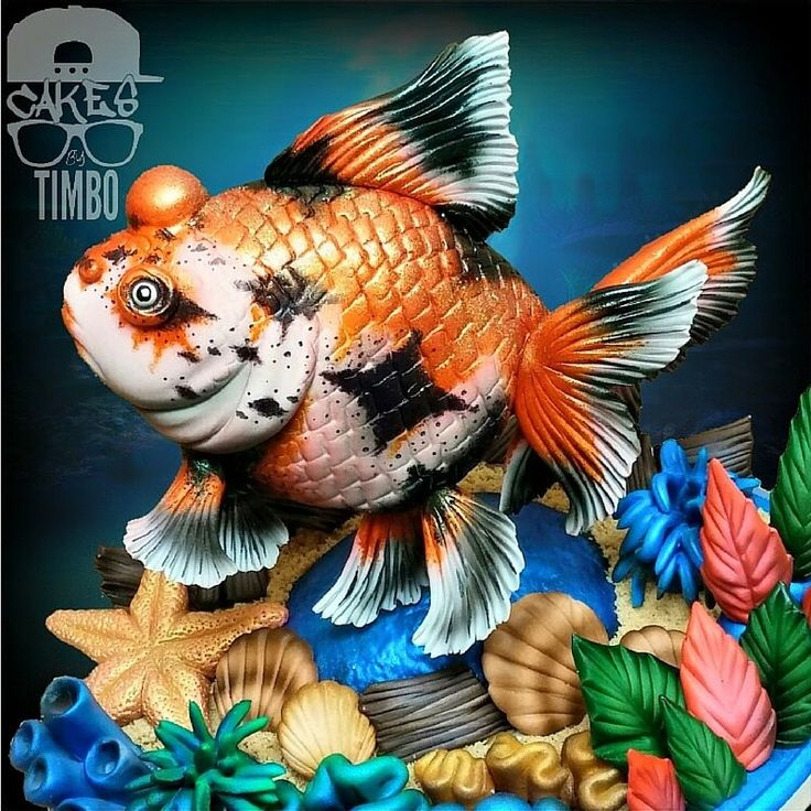 Koi Fish Cake by Timbo Sullivan........For more info, Please visit: https://cakerschool.com/