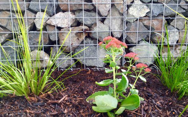 Lower Templestowe | VDB Gardens Landscaping