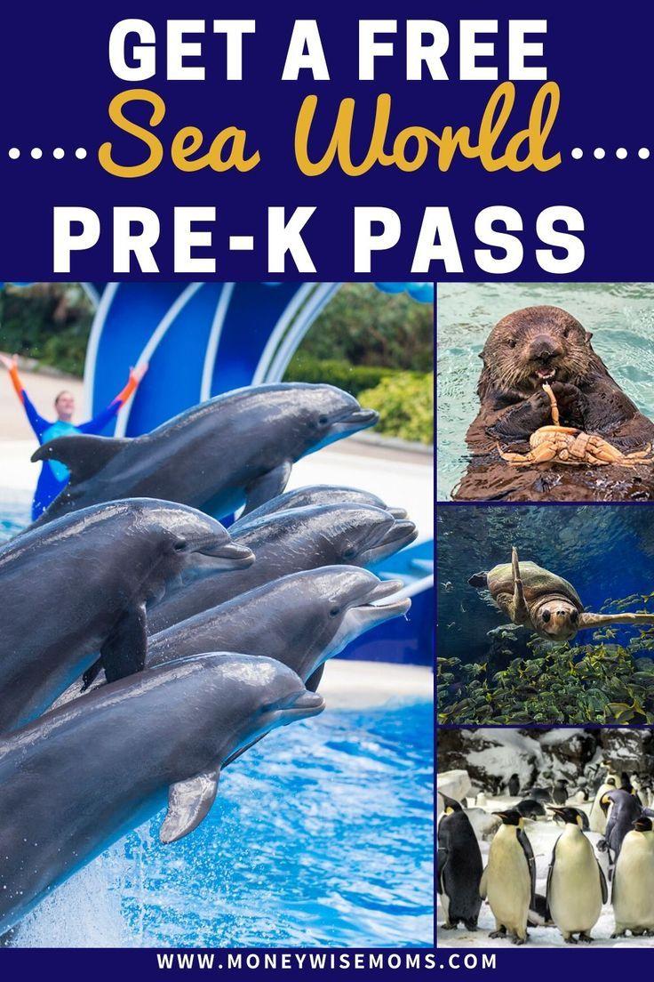 How To Get Free Sea World Admission Moneywise Moms Sea World Seaworld San Diego Amazing Travel Destinations