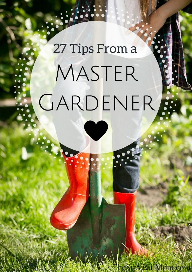 All the BEST tips for planting, harvesting, and eating plants from a bona fide Master Gardener!
