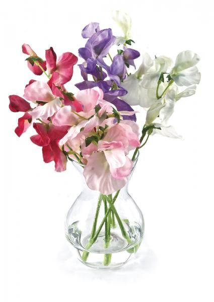 Sweet Peas in a pristina vase, set in Still Water™. Assorted (colours may vary). Height 22cm. €16.50