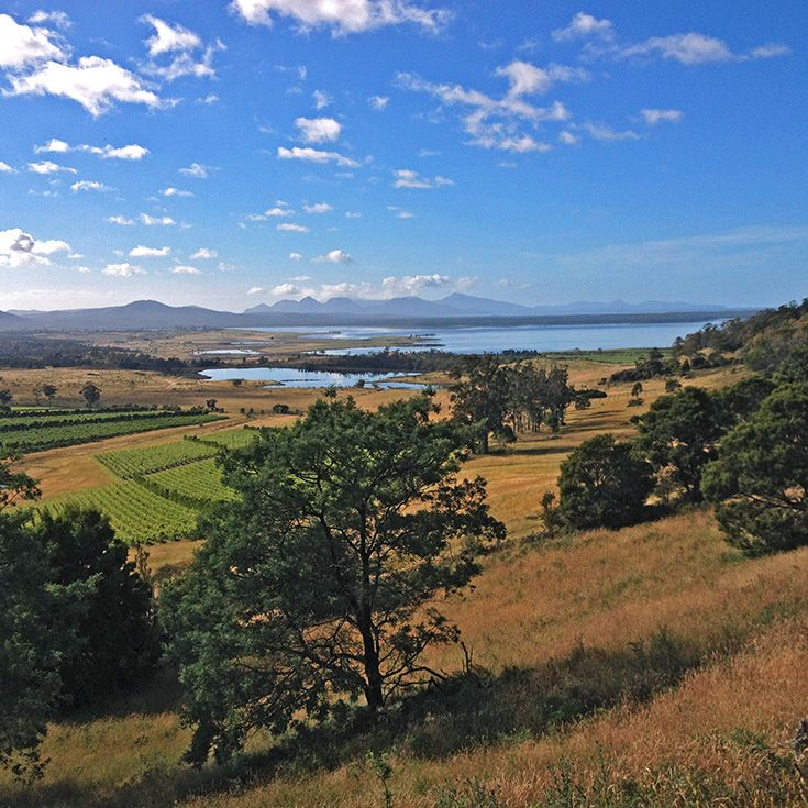 Lookout near Cranbrook, on the road to Coles Bay, with vineyards in the middle distance and the Moulting Lagoon in the distance