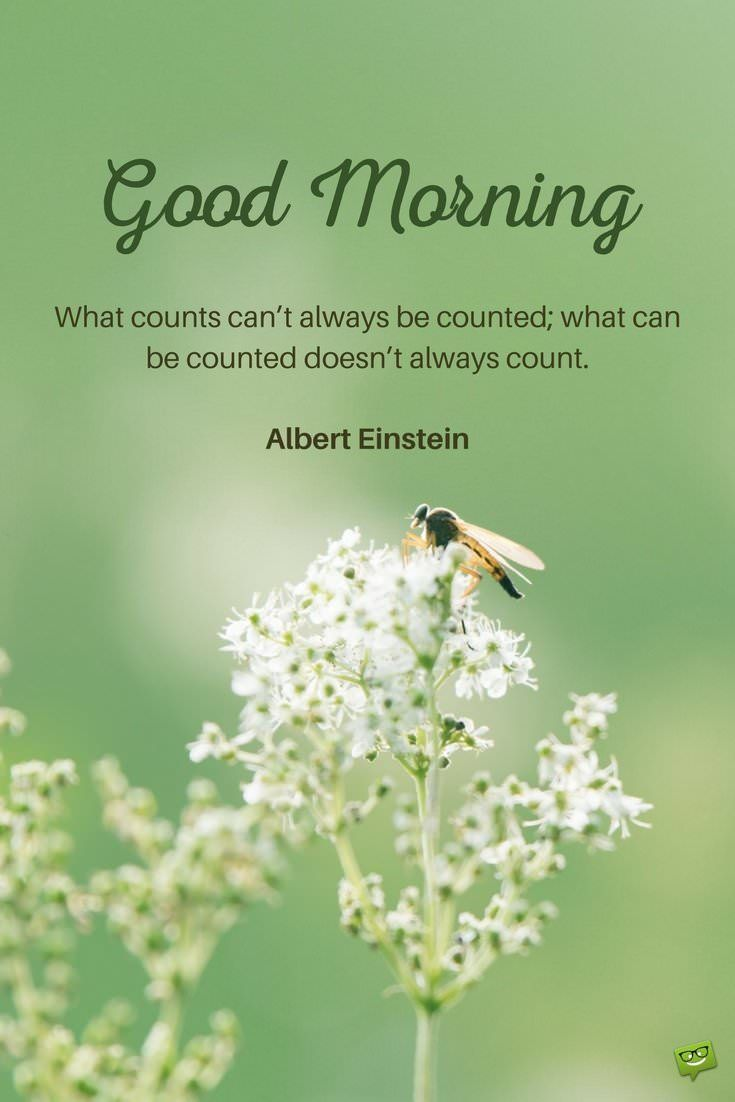 Good morning. What counts can't always be counted and what can be counted doesn't always counts. Albert Einstein.